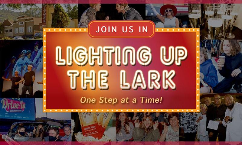 Light Up The Lark